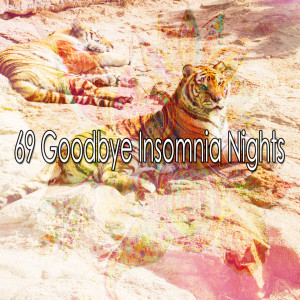 Trouble Sleeping Music Universe的專輯69 Goodbye Insomnia Nights
