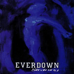 Straining 2013 Everdown