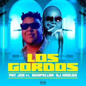Los Gordos (feat. Akapellah & DJ Khaled) 2018 Fat Joe