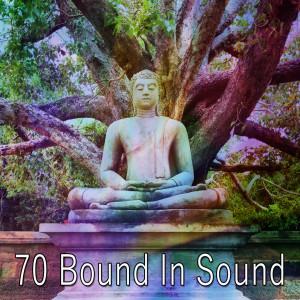 Zen Music Garden的專輯70 Bound in Sound