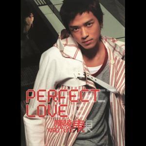 Perfect Love 2003 Daniel Chan (陈晓东)