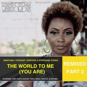 Album The World to Me (You Are) [Remixed, Pt. 2] from Stephanie Cooke