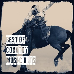 Album Best of Country Music Hits from Country Rock Party