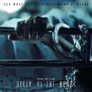 Album See What You've Done from Mary J. Blige