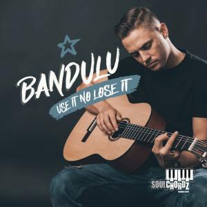 Album Use It No Lose It from Bandulu