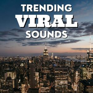 Trending Viral Sounds (Explicit) dari Various Artists