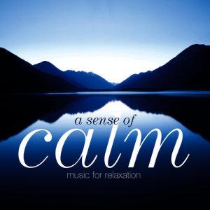 Album A Sense of Calm from Yuri Sazonoff