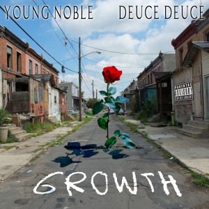 Album Growth from Young Noble