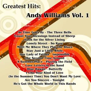 Listen to I Like Your Kind Of Love song with lyrics from Andy Williams