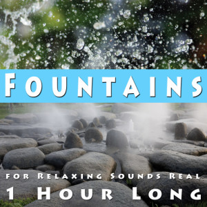 Zen Meditations from a Sleeping Buddha的專輯Fountains for Relaxing, Sounds Real 1 Hour Long
