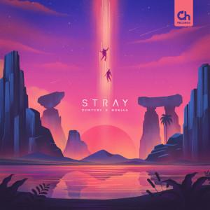 Album Stray from Nokiaa