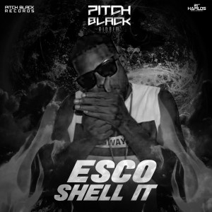 Album Shell It (Explicit) from Esco