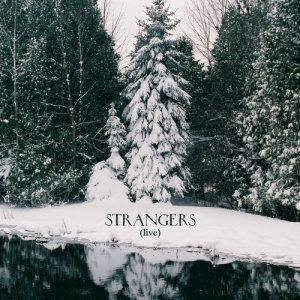 Album Strangers from Feist