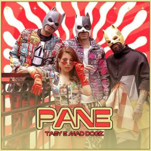Album Pane from Mad Dogz