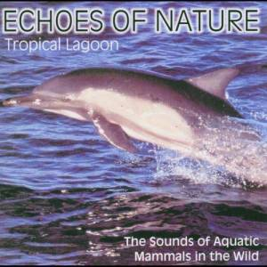 Echoes of Nature的專輯Echoes Of Nature