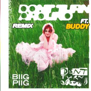 Album Don't Turn Around (Buddy Remix) from Biig Piig