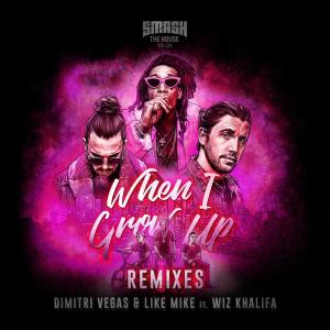 Dimitri Vegas & Like Mike的專輯When I Grow Up (The Remixes)
