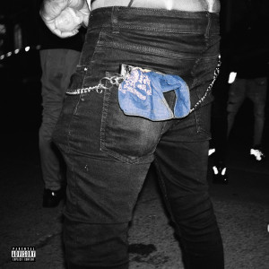Album How I Feel (Remix) [feat. NoCap & Quando Rondo] from T.R.U.