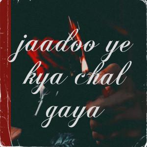 Album Jaadoo Ye Kya Chal Gaya from Alka Yagnik