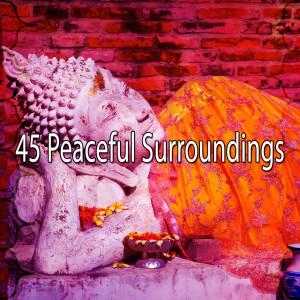 Yoga Music的專輯45 Peaceful Surroundings