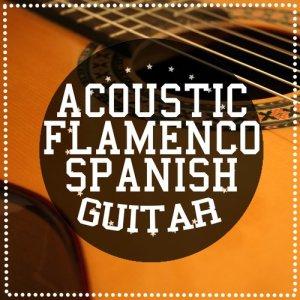 Album Acoustic Flamenco Spanish Guitar from Acoustic Guitar