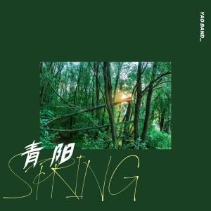 耀樂團的專輯青陽