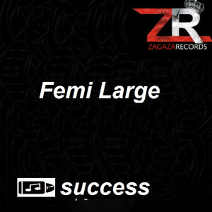 Listen to Success song with lyrics from Femi Large