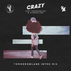 Crazy (Tomorrowland Intro Mix)