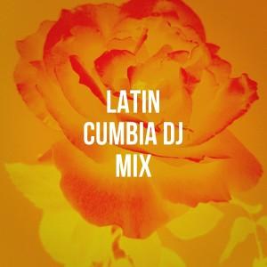Album Latin Cumbia DJ Mix from Los Latinos Románticos