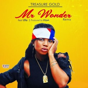 Mr Wonder (Remix) dari Treasure Gold