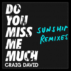 Album Do You Miss Me Much (Sunship Remixes) from Craig David
