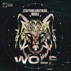 Album Wolf from Stafford Brothers