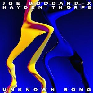 Album Unknown Song from Joe Goddard