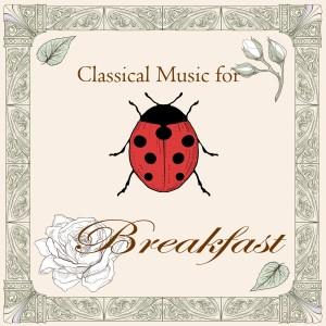 Shockwave-Sound的專輯古典音樂花房:元氣早餐曲