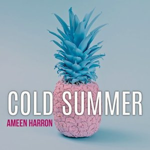 Album Cold Summer (Radio Edit) from Ameen Harron