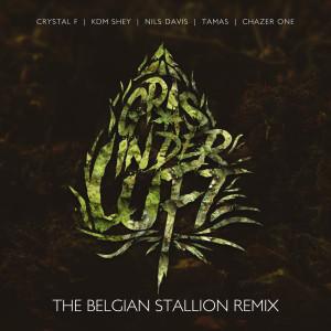 Album Gras in der Luft (The Belgian Stallion Remix) (Explicit) from Zero/zero