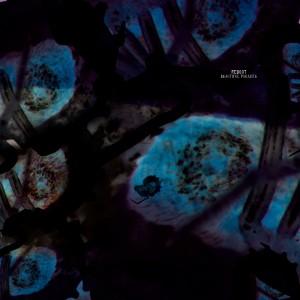 Album Beautiful Parasite from Reboot