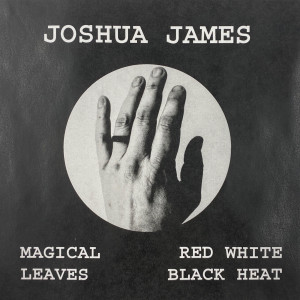 Album Magical Leaves Red White Black Heat from Joshua James
