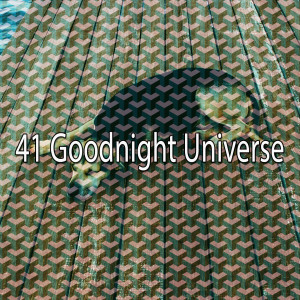 Album 41 Goodnight Universe from Rest & Relax Nature Sounds Artists