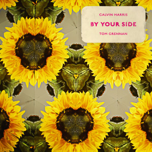 Album By Your Side from Calvin Harris