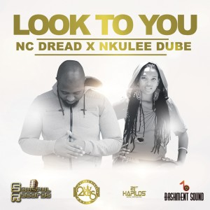 Album Look to You - Single from Nkulee Dube