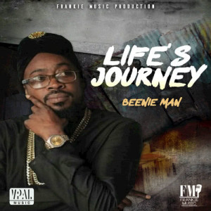 Album Life's Journey from Beenieman