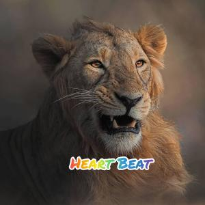Album Heart Beat (Explicit) from Rocky Gold