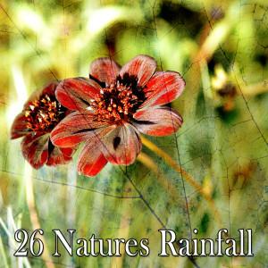 26 Natures Rainfall