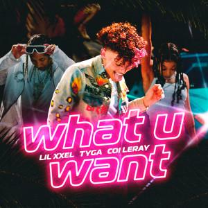 อัลบัม What U Want ศิลปิน Tyga
