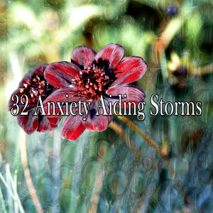 32 Anxiety Aiding Storms