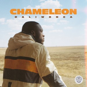 Album Chameleon from DaliWonga