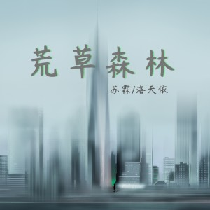 Listen to 荒草森林 song with lyrics from 苏霖