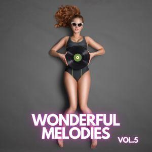 Album Wonderful Melodies vol.5 from Eric Hammerstein