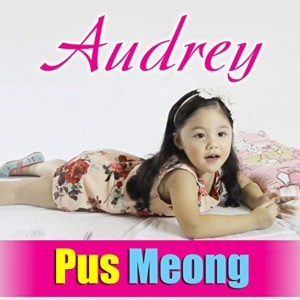 Album Puus Meooong from Audrey